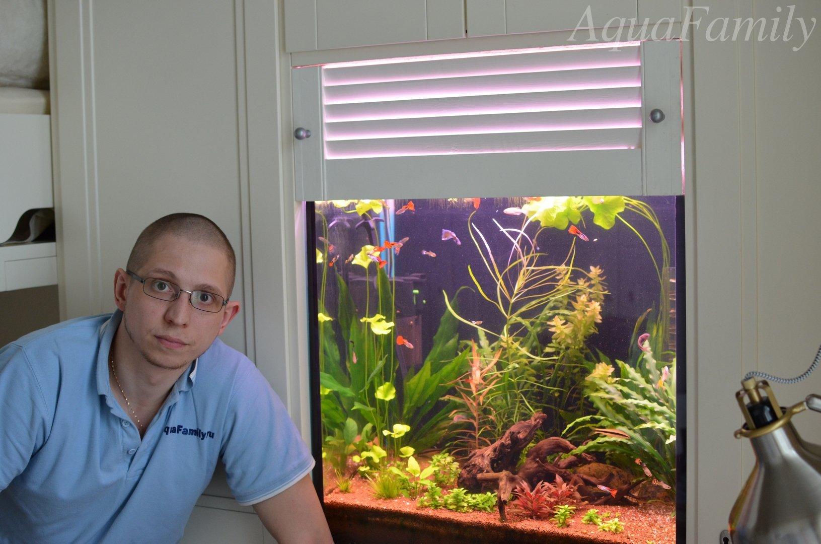 Голландский аквариум фото и схемы